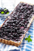 Currant Blueberry Pie — Stock Photo