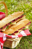 Long baguette sandwiches with salami and cheese — Stock Photo