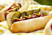 Salsichas grelhadas com mostarda, ketchup e molho — Foto Stock
