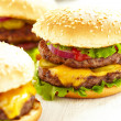 Classic Burgers — Stock Photo #28959475