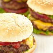 Classic Burgers — Stock Photo #29365215