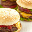 Classic Burgers — Stock Photo #29568573
