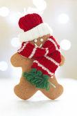 Omino di biscotto — Foto Stock