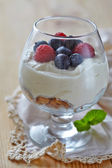 Berry trifle — Stock Photo
