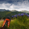 Stock Photo: Shoe and mountains