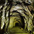 Old mining tunnel. — Stock Photo #32664037
