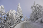Winter mountain road — ストック写真