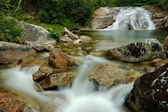 Rapids on a mountain stream — Stock Photo