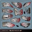 vector set wings — Vektorgrafik