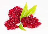 Ruby grains of garnet — Stock Photo