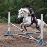 Rider on the White horse — Stock Photo