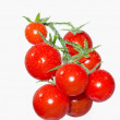 Stock Photo: Cherry tomatoes on branch in water droplets