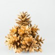 Christmas tree of the golden cones — Stock Photo