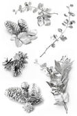 Silver leaves — Stock Photo