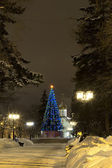 Winter city alley decorated the Christmas tree — Stock Photo