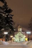 Iglesia de alexander nevsky — Foto de Stock