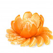 Mandarin flower - Stok fotoraf
