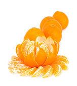 Flower of mandarin — Stock Photo