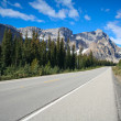 Stock Photo: Street at Banff National Park