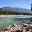 Kootenay River — Stock Photo