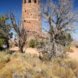 Watchtower at the Grand Canyon — Stock Photo
