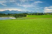 Meadows au lac illasbergsee — Photo