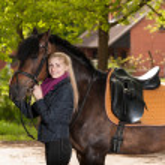 Girl with pony — Stock Photo #28144111