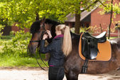 Girl bridles her horse — Stock Photo