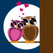 Valentine card with owls couple. — Stock Vector #41678015
