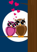 Valentine card with owls couple. — Stock Vector
