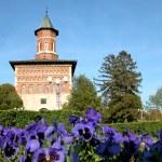 Romanian monastery — Stock Photo #17352653