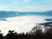Fog in fog in mountains — Stock Photo