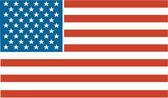 Bandera patriótica con estrellas y rayas — Vector de stock