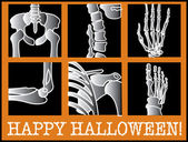 Series Of Xrays With Text Reading Happy Halloween — Stock Vector