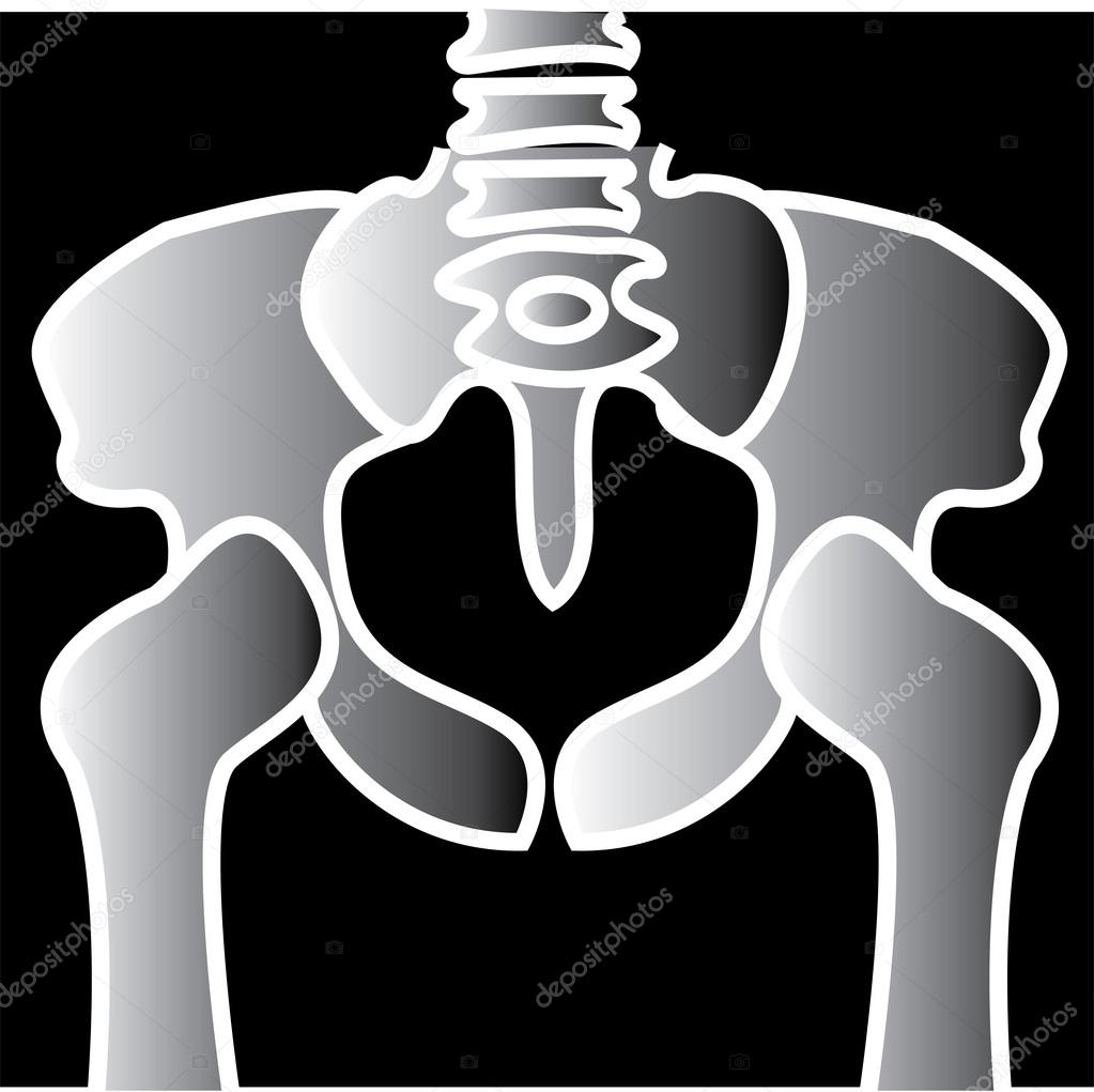 clipart xray - photo #42