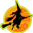 Ugly witch riding on a broomstick — Stock Vector #17683787