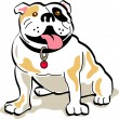 Sitting bulldog hanging his tongue out — Stock Vector