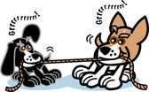 Two dogs growling while playing tug of war with a rope — Stock Vector