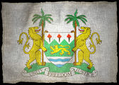 Sierra leone broni, flaga narodowa — Zdjęcie stockowe