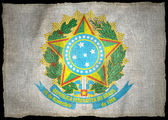 BRAZIL ARMS NATIONAL FLAG — Foto Stock