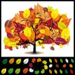 Autumn tree — Stock Vector #29702535