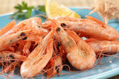 Fresh boiled prawns from portuguese coast — Stock Photo