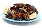 Dish of boiled mussels — Stock Photo