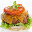 Cheeseburger on a plate isolated on grey — Stock Photo