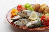 Dish of portuguese sardines — Stock Photo