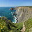 Arrifana beach in South-West Alentejo and Costa Vicentina Natura — Foto de Stock