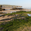 Amoreira beach in South-West Alentejo and Costa Vicentina Natura — Stock Photo