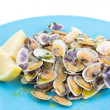 "Stock Photo: Portuguese traditional clams ""conquilhas"""