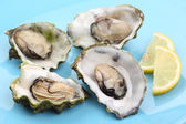 Boiled oysters with lemon juice — Stock Photo