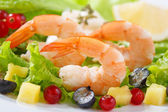 Dish of fresh cooked shrimps with salad — Stock Photo